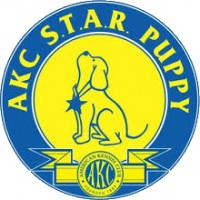 AKC S.T.A.R. Puppy Course