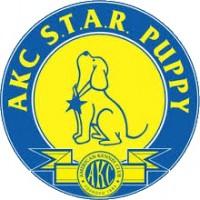 AKC S.T.A.R. Puppy Course