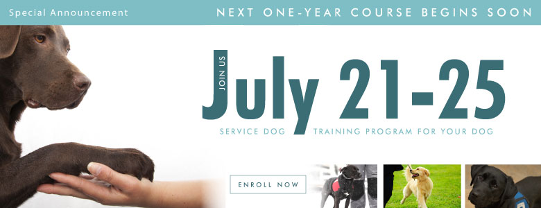 Next Intensive Training Course begins July 21, 2014!